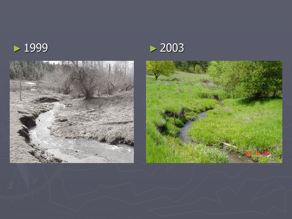 1999 1999 2003