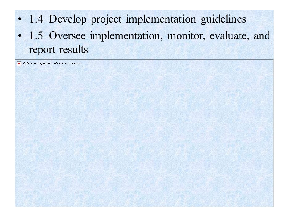 1.4 Develop project implementation guidelines 1.5 Oversee implementation, monitor, evaluate, and report results