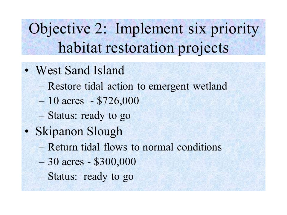Objective 2: Implement six priority habitat restoration projects West Sand Island –Restore tidal action to emergent wetland –10 acres - $726,000 –Status: ready to go Skipanon Slough –Return tidal flows to normal conditions –30 acres - $300,000 –Status: ready to go