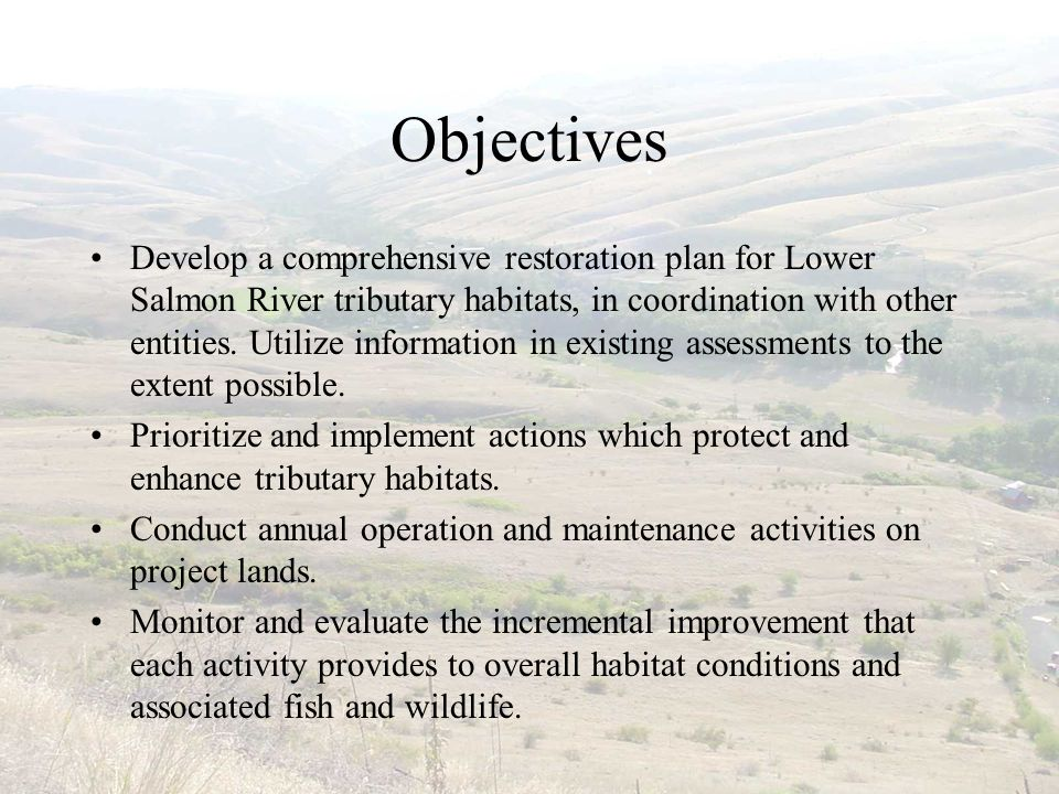 Objectives Develop a comprehensive restoration plan for Lower Salmon River tributary habitats, in coordination with other entities.
