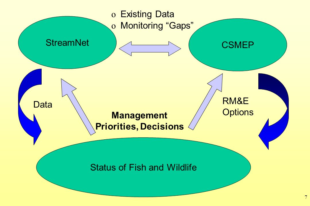 7 Status of Fish and Wildlife StreamNet CSMEP o Existing Data o Monitoring Gaps Data Management Priorities, Decisions RM&E Options