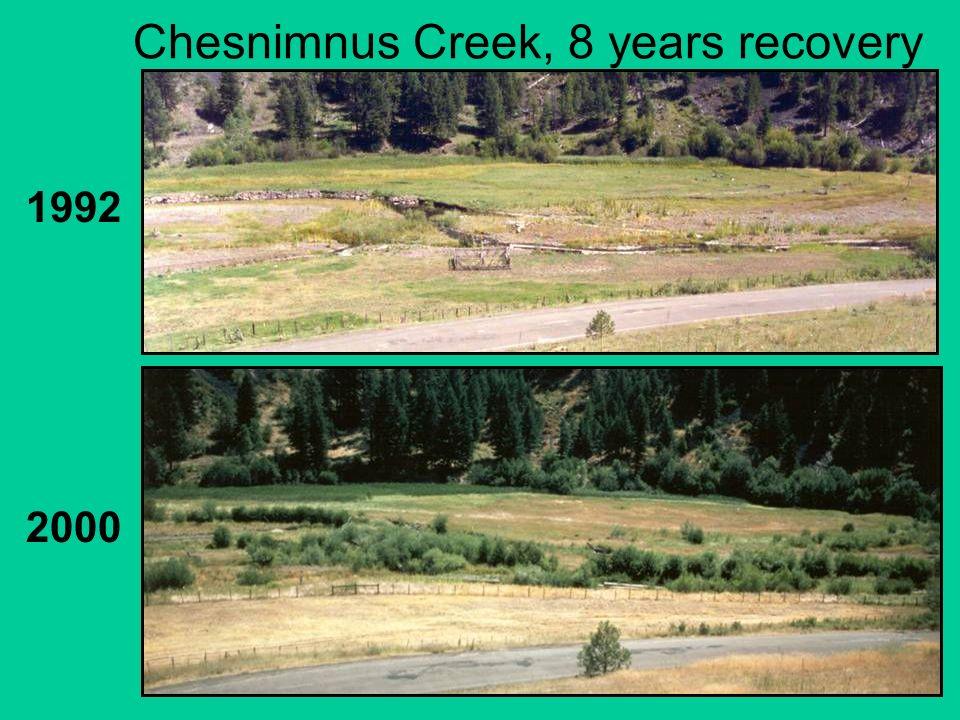 Chesnimnus Creek, 8 years recovery 1992 2000