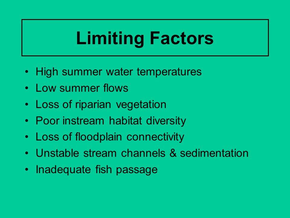 Limiting Factors High summer water temperatures Low summer flows Loss of riparian vegetation Poor instream habitat diversity Loss of floodplain connec
