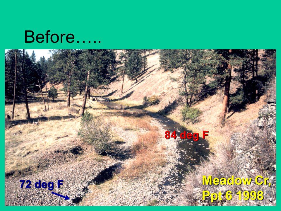 Before….. Meadow Cr, Ppt 6 1998 72 deg F 84 deg F
