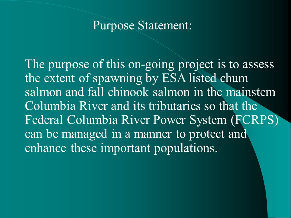 Purpose Statement: The purpose of this on-going project is to assess the extent of spawning by ESA listed chum salmon and fall chinook salmon in the mainstem Columbia River and its tributaries so that the Federal Columbia River Power System (FCRPS) can be managed in a manner to protect and enhance these important populations.