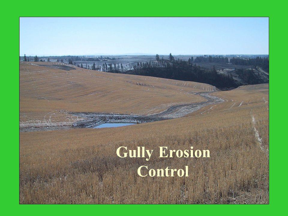 Gully Erosion Control