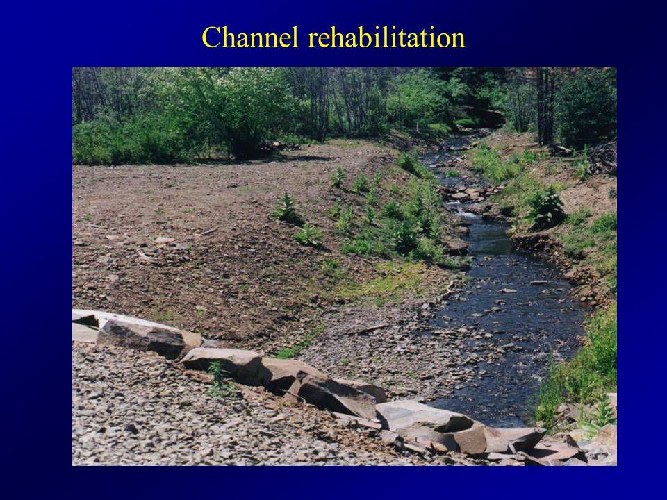 Channel rehabilitation