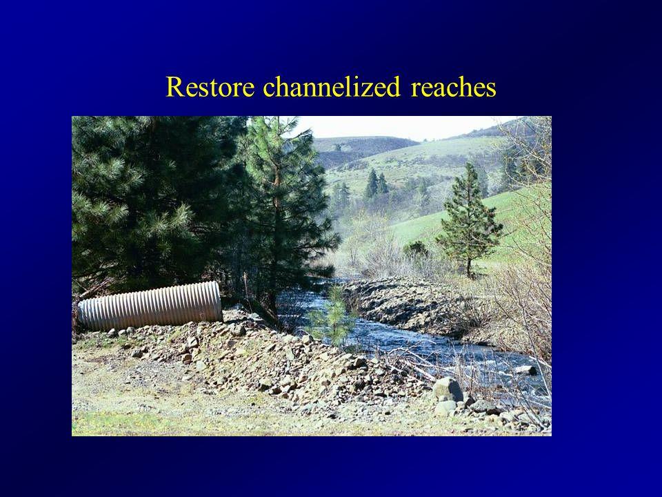 Restore channelized reaches