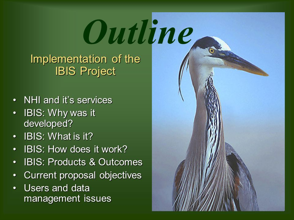 Outline Implementation of the IBIS Project NHI and its servicesNHI and its services IBIS: Why was it developed IBIS: Why was it developed.
