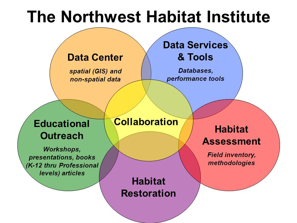 The Northwest Habitat Institute Data Center spatial (GIS) and non-spatial data Data Services & Tools Databases, performance tools Educational Outreach Workshops, presentations, books (K-12 thru Professional levels) articles Habitat Restoration Collaboration Habitat Assessment Field inventory, methodologies