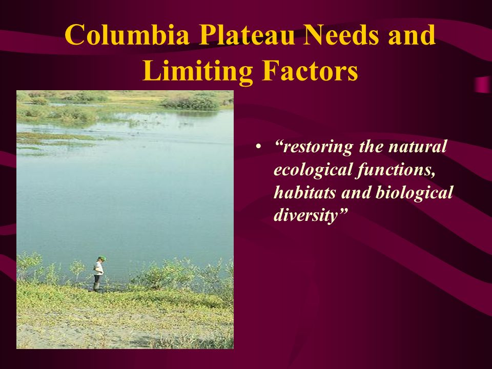 Columbia Plateau Needs and Limiting Factors restoring the natural ecological functions, habitats and biological diversity