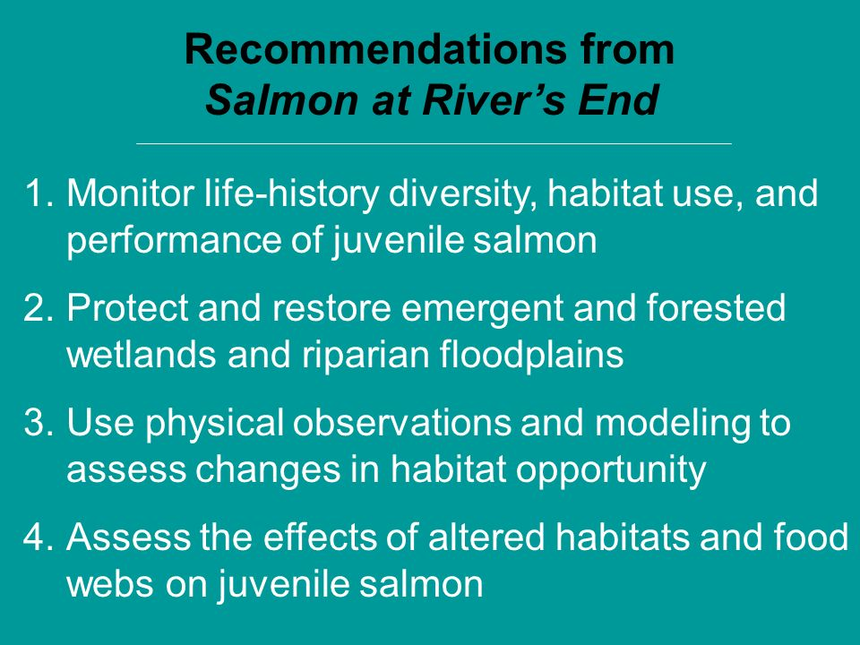 Recommendations from Salmon at Rivers End 1.Monitor life-history diversity, habitat use, and performance of juvenile salmon 2.Protect and restore emer