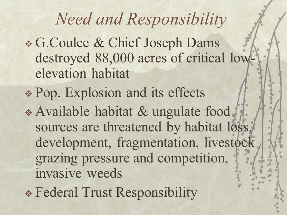 Need and Responsibility G.Coulee & Chief Joseph Dams destroyed 88,000 acres of critical low- elevation habitat Pop.