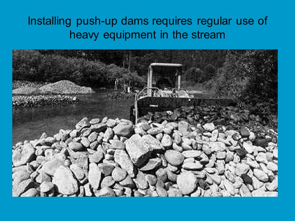 Installing push-up dams requires regular use of heavy equipment in the stream