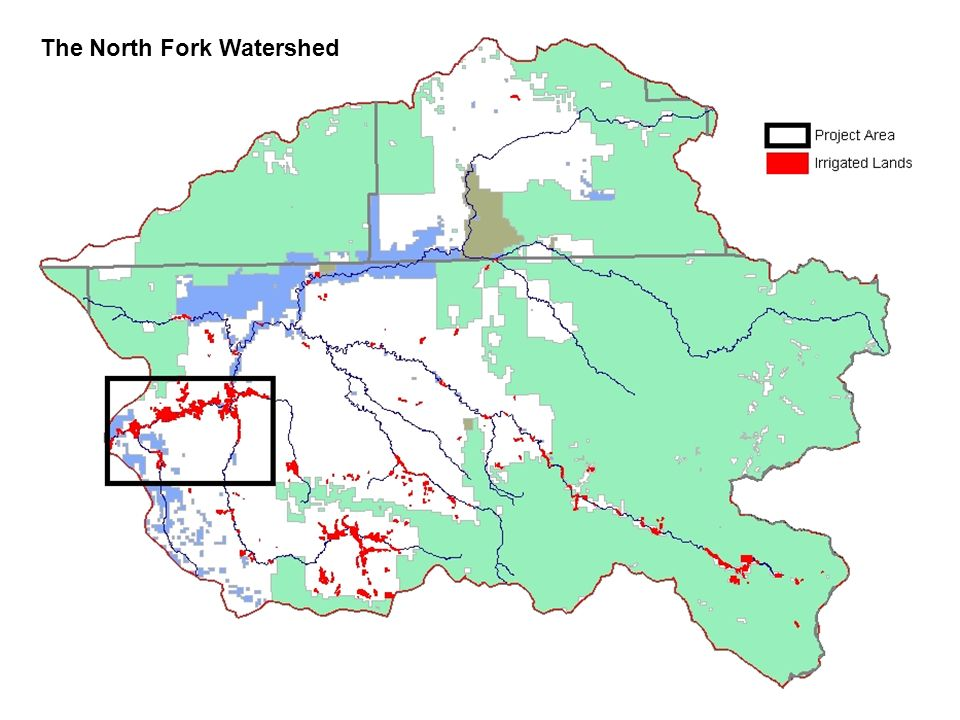 The North Fork Watershed