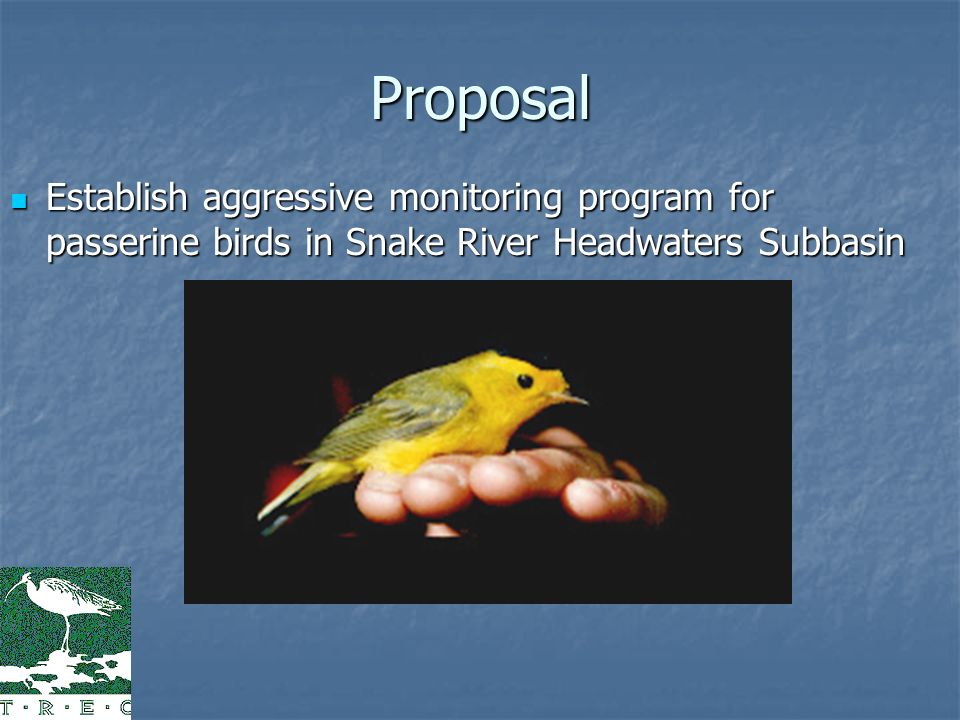 Proposal Establish aggressive monitoring program for passerine birds in Snake River Headwaters Subbasin Establish aggressive monitoring program for passerine birds in Snake River Headwaters Subbasin