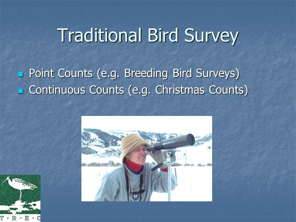 Traditional Bird Survey Point Counts (e.g. Breeding Bird Surveys) Point Counts (e.g.