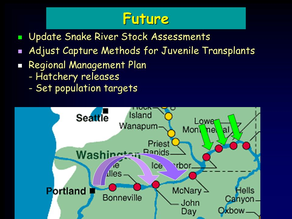 Update Snake River Stock Assessments Update Snake River Stock Assessments Adjust Capture Methods for Juvenile Transplants Adjust Capture Methods for Juvenile Transplants Regional Management Plan - Hatchery releases - Set population targets Regional Management Plan - Hatchery releases - Set population targets Future
