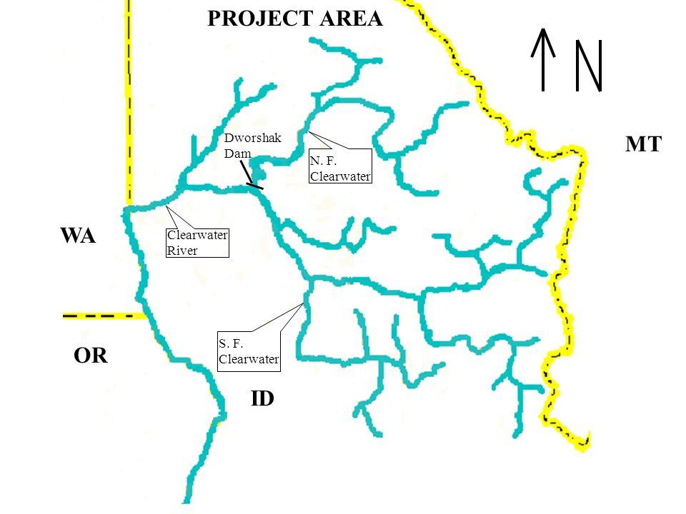 Clearwater River N. F. Clearwater S. F. Clearwater Dworshak Dam PROJECT AREA WA OR MT ID