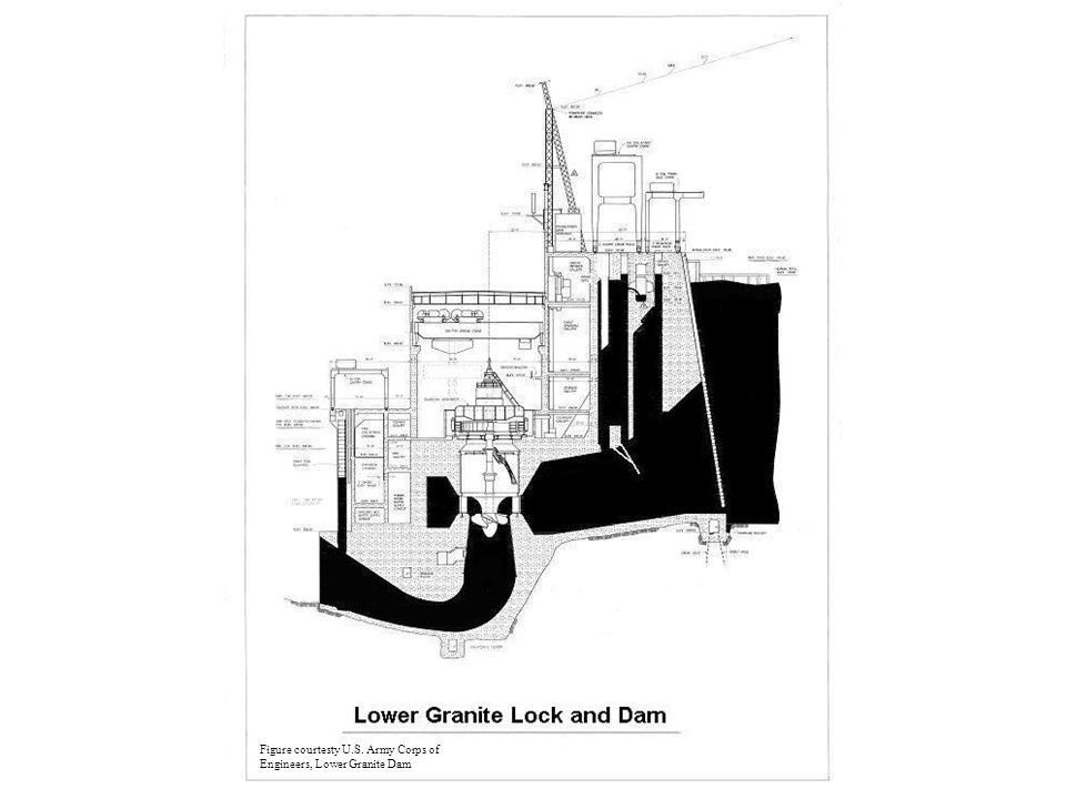 Figure courtesty U.S. Army Corps of Engineers, Lower Granite Dam