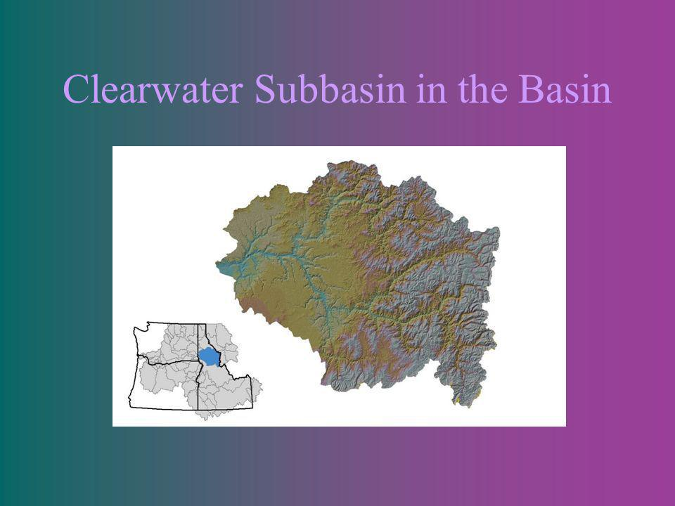 Clearwater Subbasin in the Basin