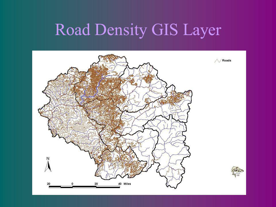 Road Density GIS Layer