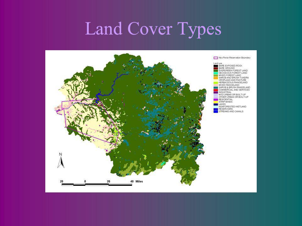 Land Cover Types