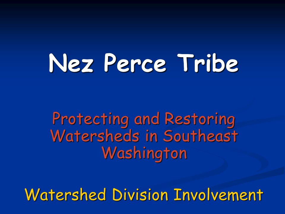 The Nez Perce Tribe is Actively Involved in: Protect & Restore the Asotin Creek Watershed: road decommissioning and stream restoration (#00011067) Protect & Restore the Asotin Creek Watershed: road decommissioning and stream restoration (#00011067) Snake River Salmon Recovery Board Snake River Salmon Recovery Board Watershed Planning Watershed Planning Subbasin Planning Subbasin Planning