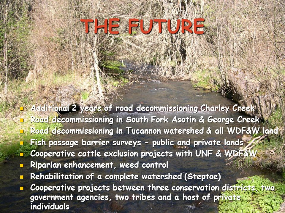 THE FUTURE Additional 2 years of road decommissioning Charley Creek Additional 2 years of road decommissioning Charley Creek Road decommissioning in S