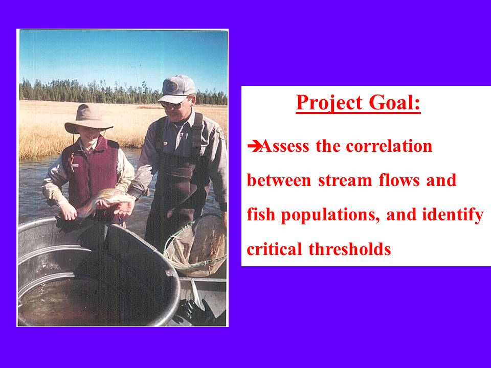 Project Goal: Assess the correlation between stream flows and fish populations, and identify critical thresholds