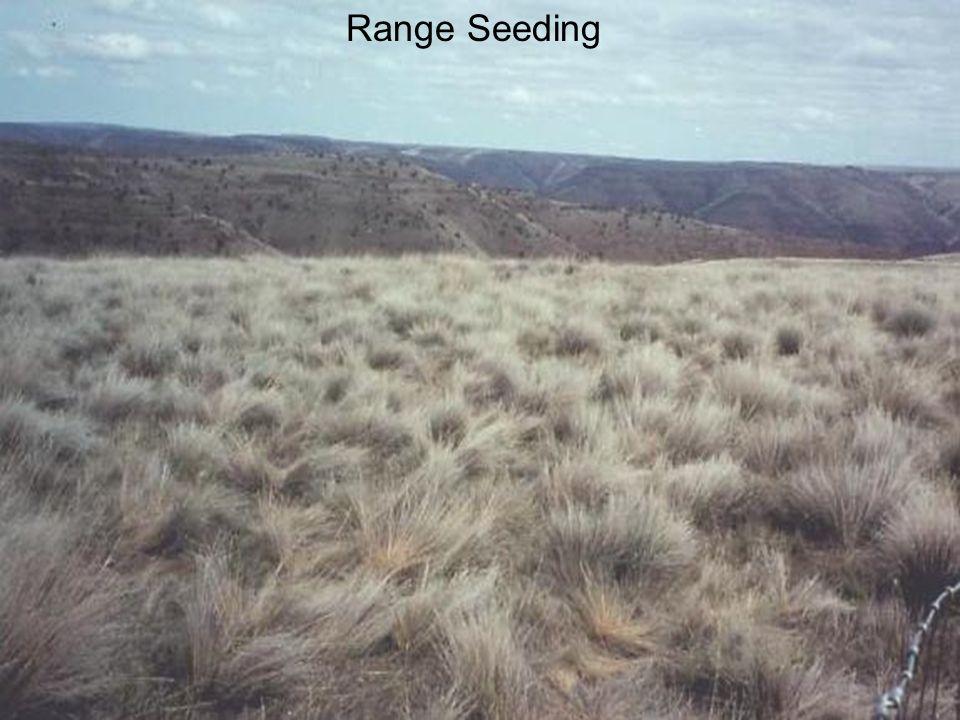 Range Seeding