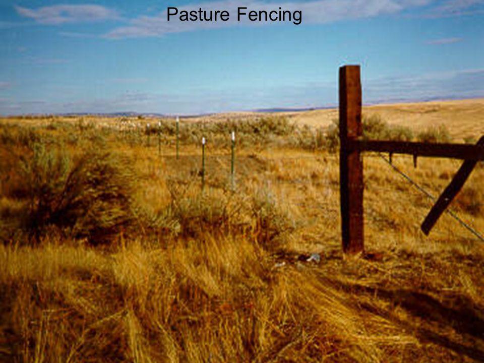 Pasture Fencing