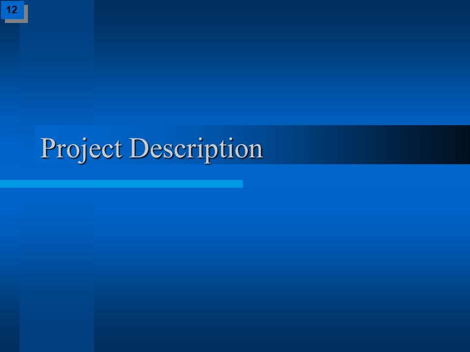 Project Description 12