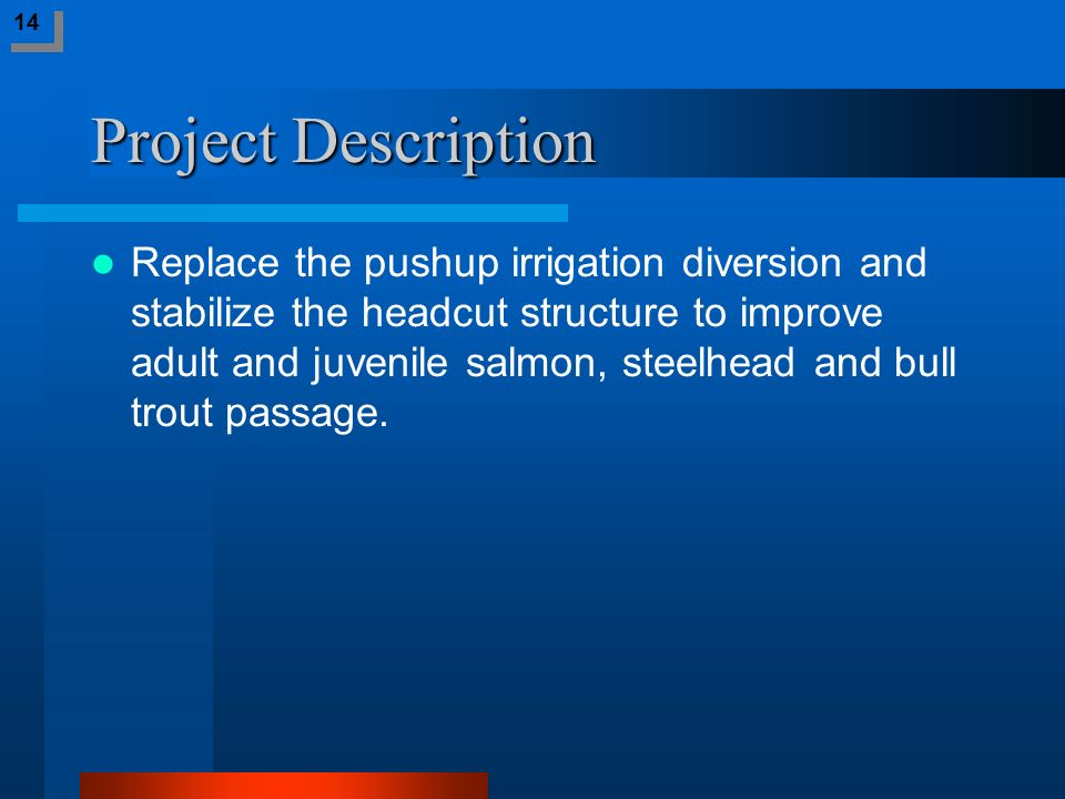 Project Description Replace the pushup irrigation diversion and stabilize the headcut structure to improve adult and juvenile salmon, steelhead and bu