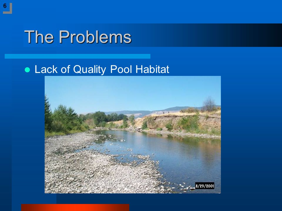 The Problems Lack of Quality Pool Habitat 6 6