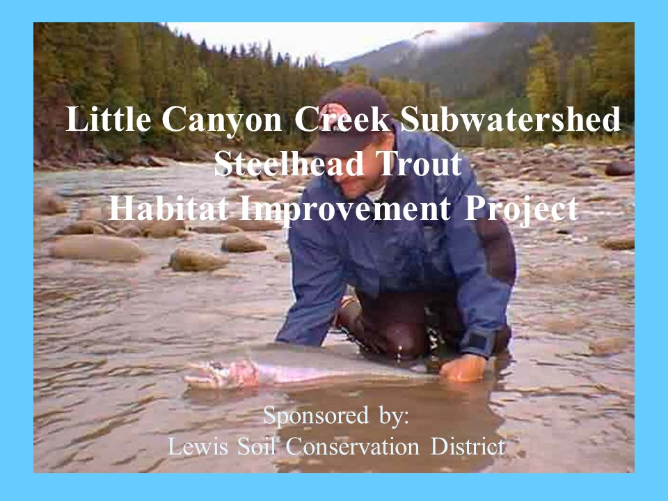 Little Canyon Creek Subwatershed Steelhead Trout Habitat Improvement Project Sponsored by: Lewis Soil Conservation District