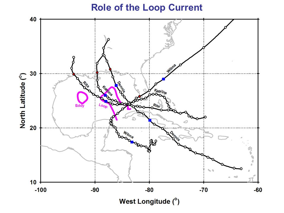 Role of the Loop Current