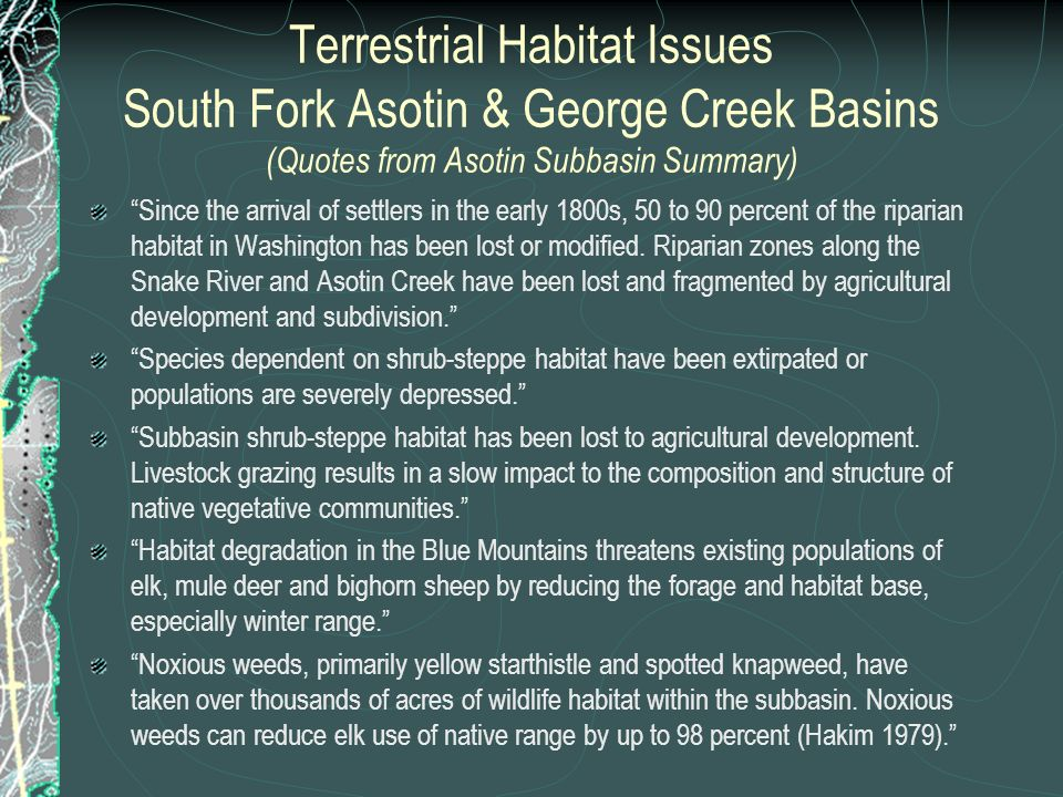 Terrestrial Habitat Issues South Fork Asotin & George Creek Basins (Quotes from Asotin Subbasin Summary) Since the arrival of settlers in the early 18