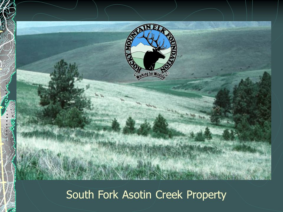 South Fork Asotin Creek Property