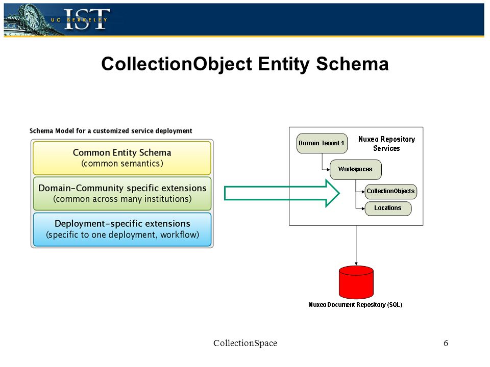 CollectionObject Entity Schema CollectionSpace6