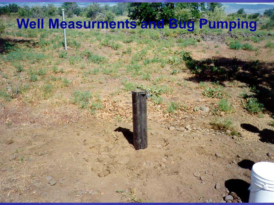 Well Measurments and Bug Pumping