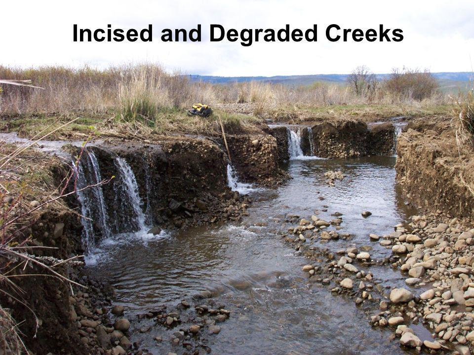 Incised and Degraded Creeks