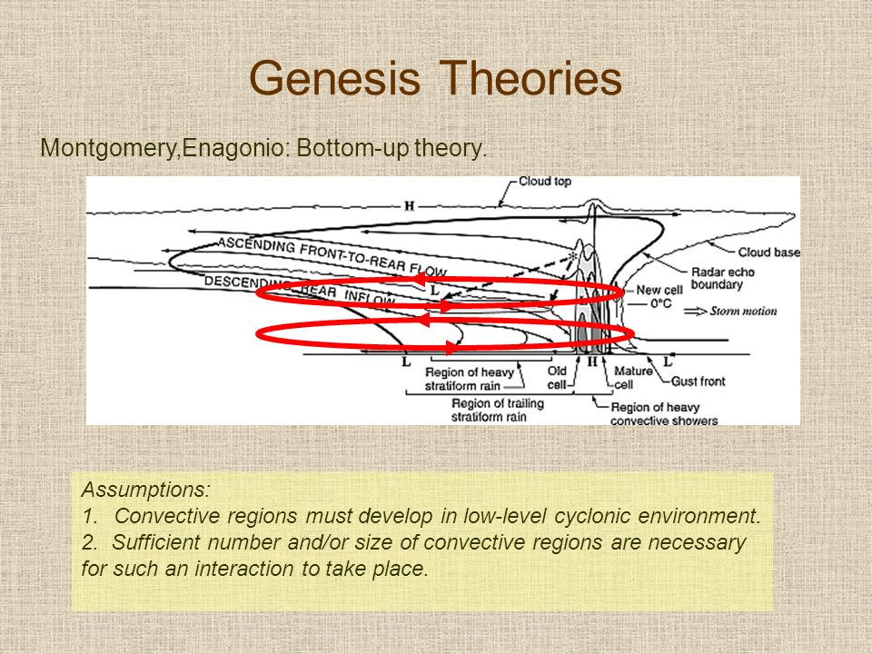 Montgomery,Enagonio: Bottom-up theory.