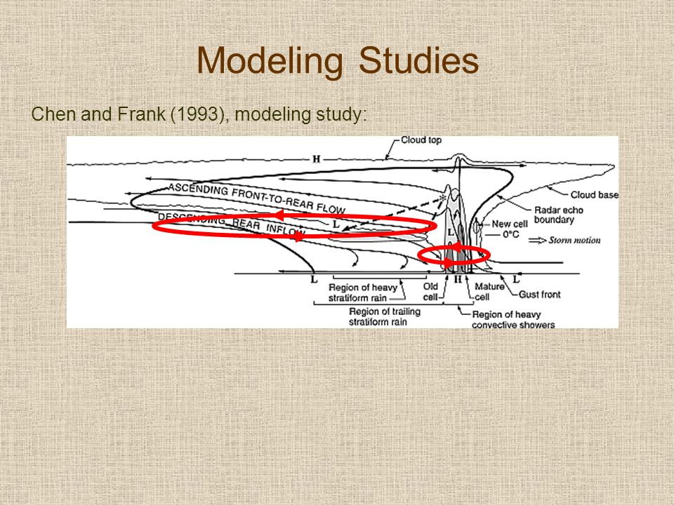 Modeling Studies Chen and Frank (1993), modeling study: