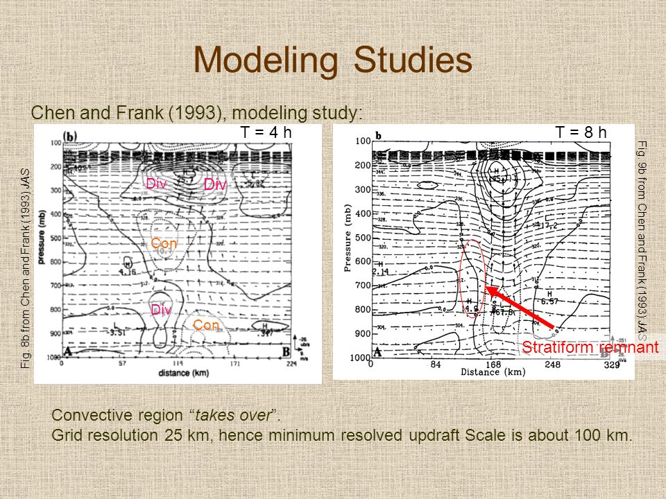 Fig. 9b from Chen and Frank (1993) JAS Modeling Studies Chen and Frank (1993), modeling study: Convective region takes over. Grid resolution 25 km, he