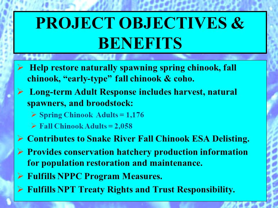 PROJECT OBJECTIVES & BENEFITS Help restore naturally spawning spring chinook, fall chinook, early-type fall chinook & coho.
