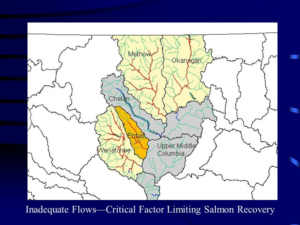 Fish Need Water in Adequate Amounts and at the Right Time Increasing Tributaries Flows is Priority Objective- -2000 BiOp & RPA 150 Improving flows is an immediate habitat priority Three subbasins are High Priority BasinsAll H Paper Getting Water Back into Streams is the Most Immediate Need