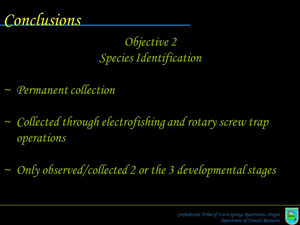 Conclusions Objective 2 Species Identification ~Permanent collection ~Collected through electrofishing and rotary screw trap operations ~Only observed