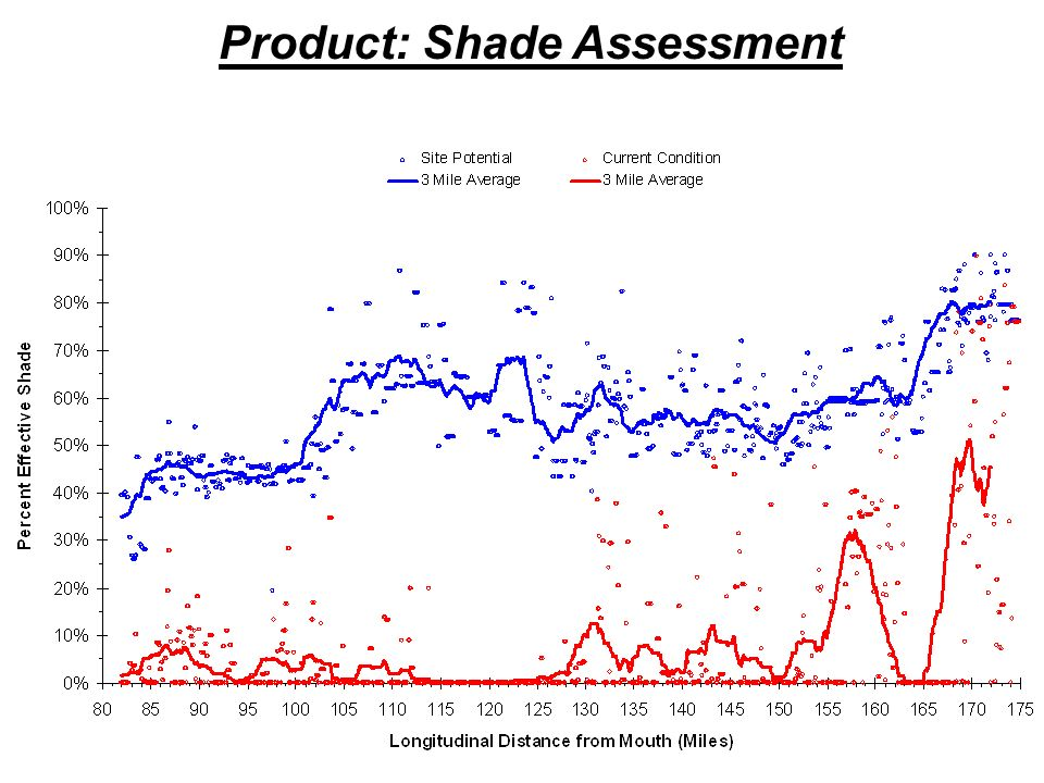 Product: Shade Assessment