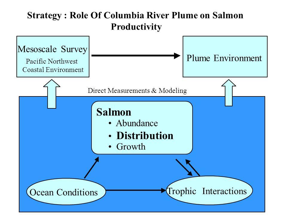 Ocean Conditions TrophicInteractions Salmon Abundance Distribution Growth MesoscaleSurvey Pacific Northwest Coastal Environment Plume Environment Stra